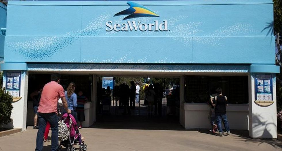 Regulators fine SeaWorld San Diego over worker safety