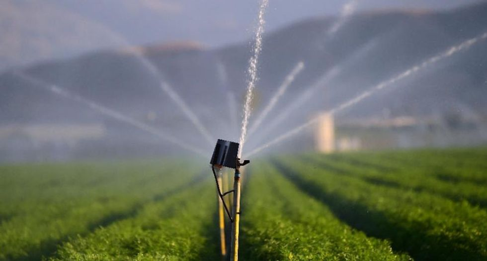 Earth's groundwater being drained at rapid rate: studies