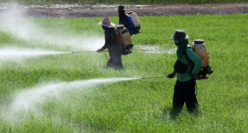 Five-decade-long study links pesticide DDT to higher breast cancer risk