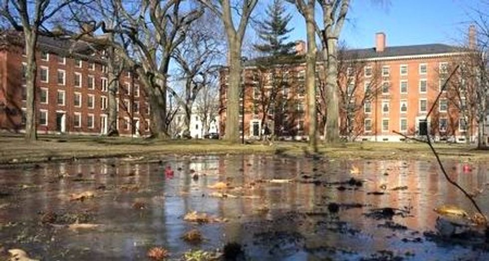 Harvard gives students more latitude to describe their gender