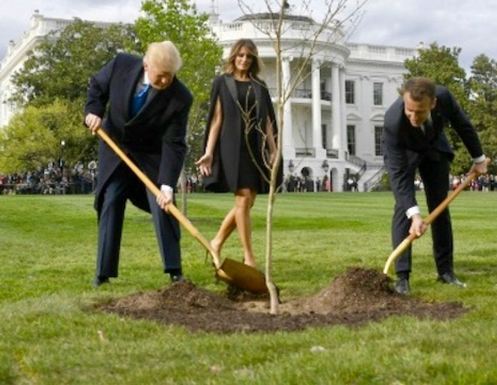 Macron to send Trump another friendship tree after first one dies