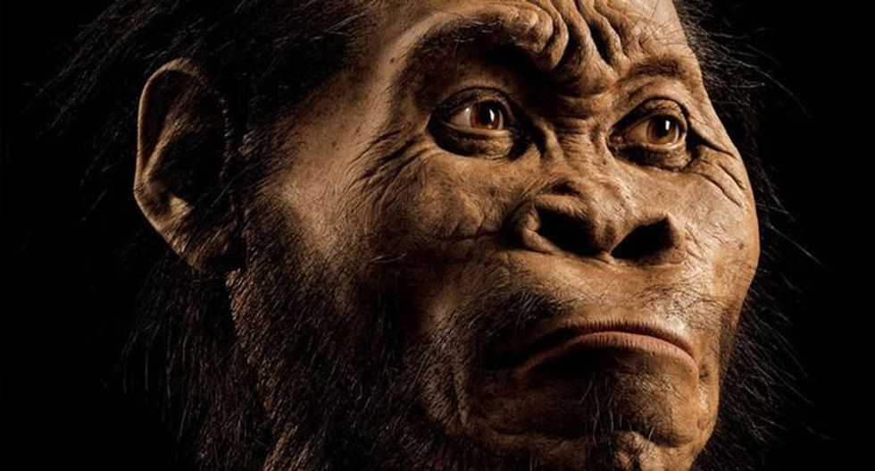 'I'm no grandchild of any ape': New human ancestor found in South Africa dismissed as a racist conspiracy