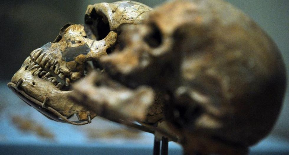 New Neanderthal DNA discovery redraws human out-of-Africa timeline