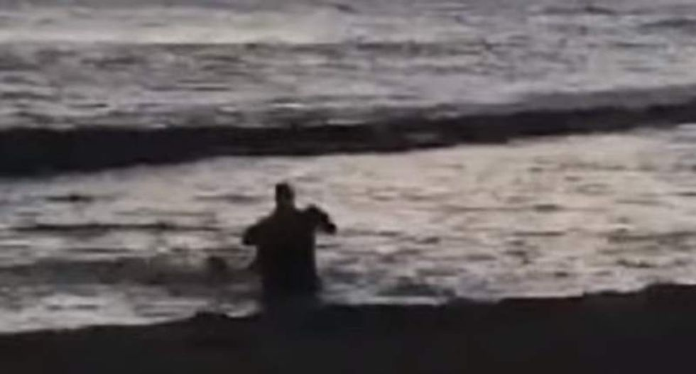 Feds search for mystery man filmed punching Hawaiian pregnant endangered seal