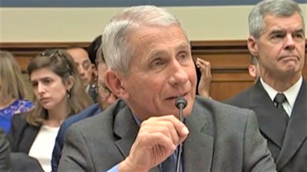 Republican tries to get doctor to downplay coronavirus threat -- and it backfires spectacularly