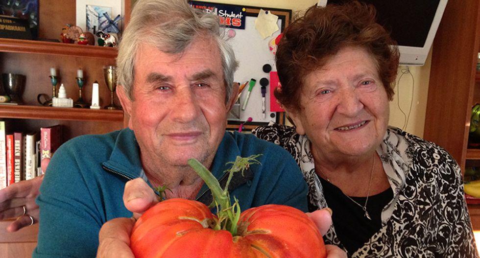 Elderly Illinois couple dies of coronavirus just hours apart