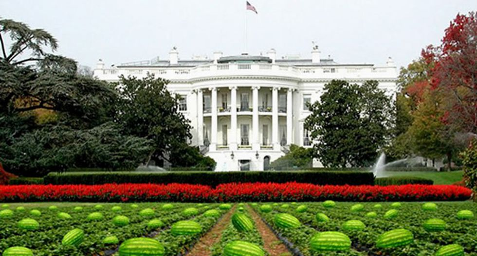 Political cartoonist claims racist Obama joke was innocent mistake: 'I just love watermelon'