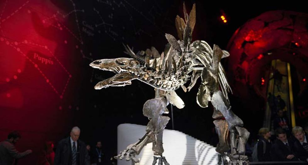 Paleontologists use Hollywood 3D technology to reassess knowledge of Stegosaurus