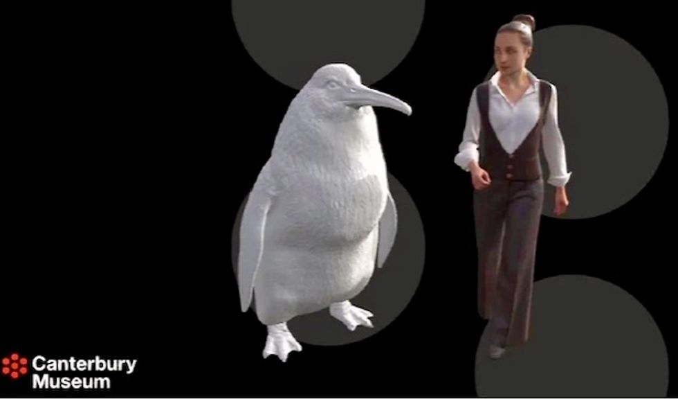 Giant penguin fossil found in New Zealand