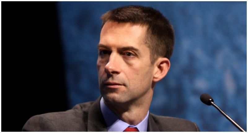 Republican Tom Cotton claims 'we're literally risking our freedoms' if we allow troops to be influenced by critical race theory