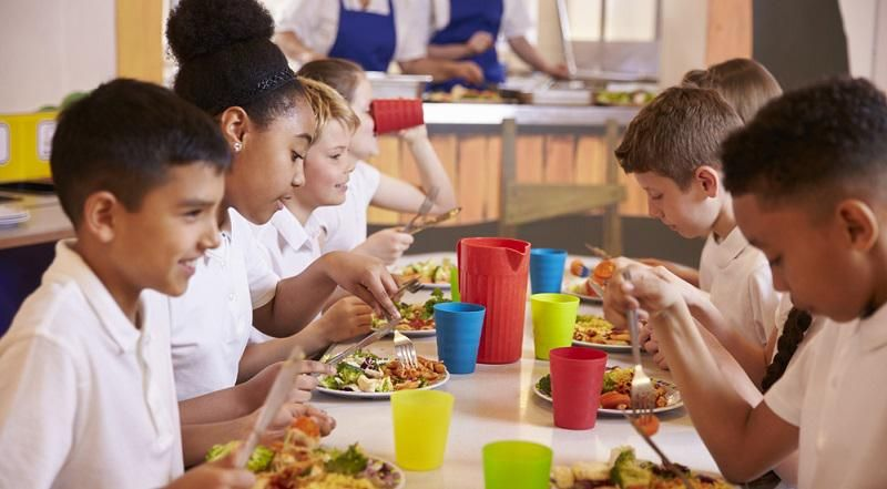 Fox News anchor attacks New Jersey's school nutrition program: 'Kids are going to grow up thinking lunch is free!'