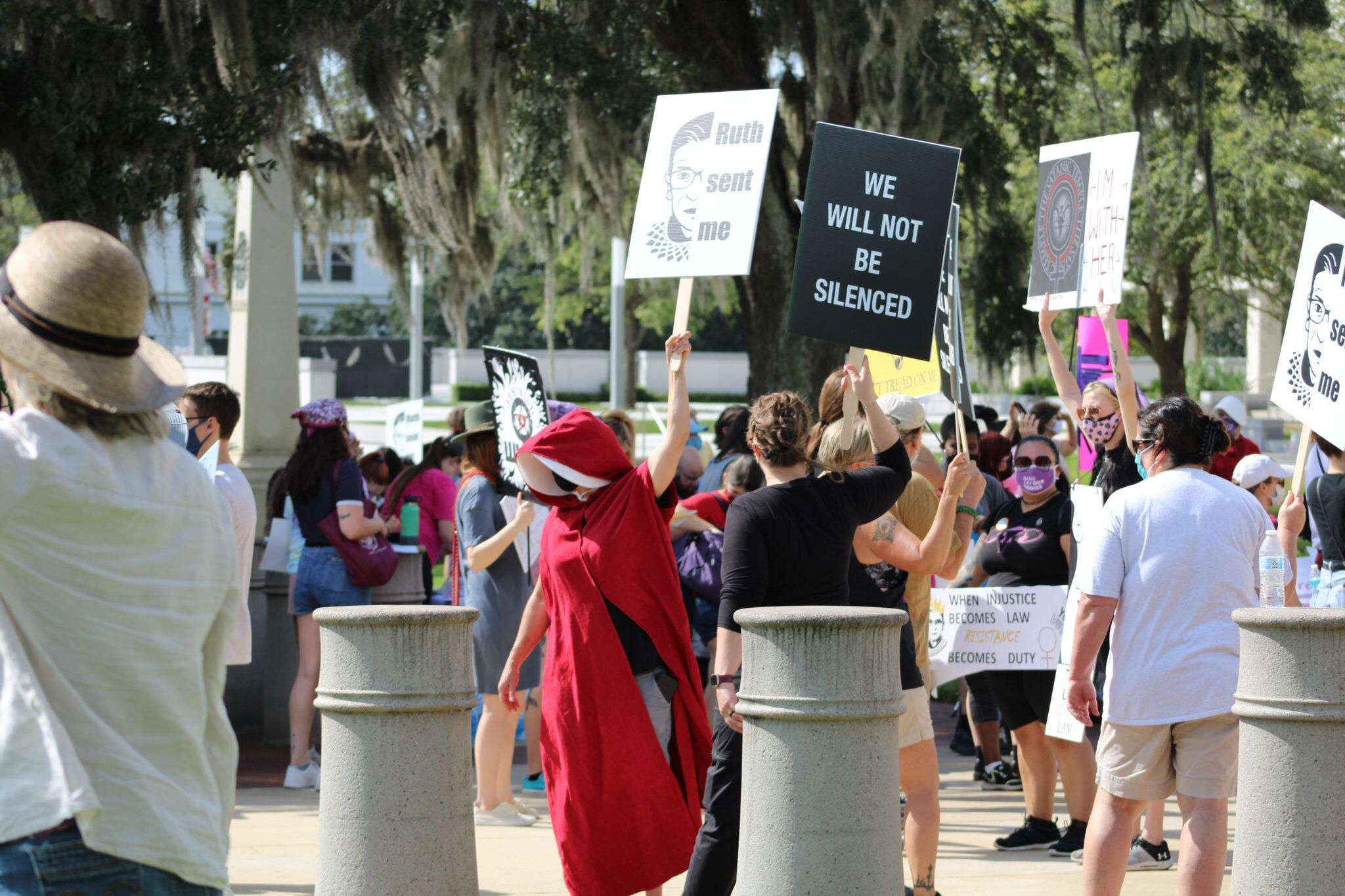 Protesters march to Tallahassee state capitol: 'Don't Texas my Florida!'