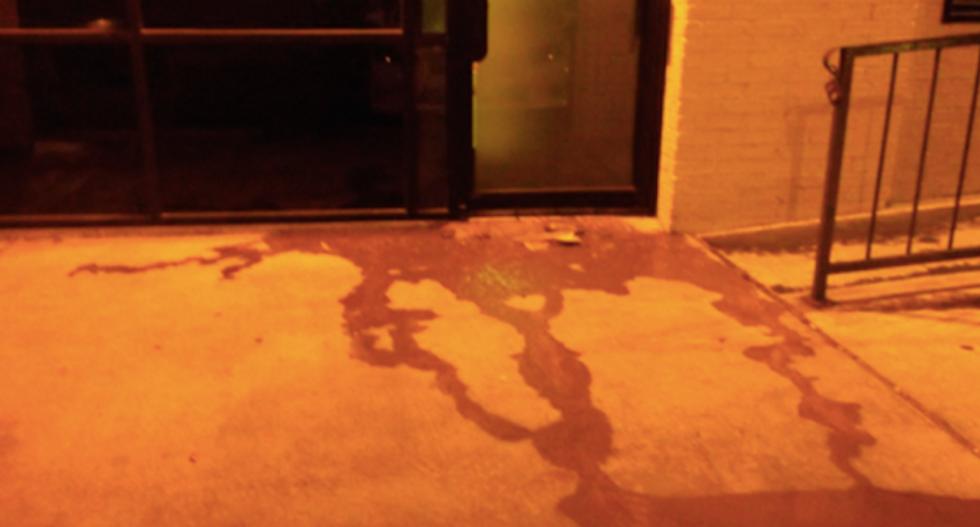 Vandals fling feces and ripped-up Koran at Texas mosque following Paris terror attacks