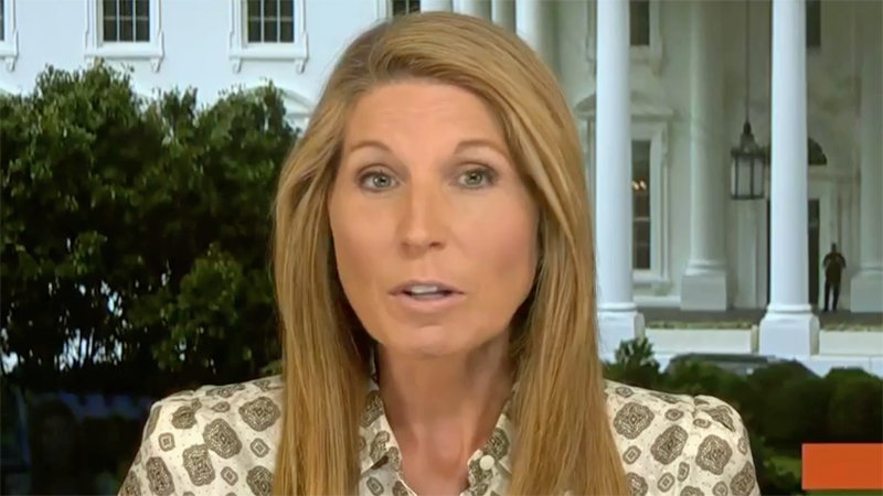 Nicolle Wallace proves Republicans know they are lying to push voter suppression