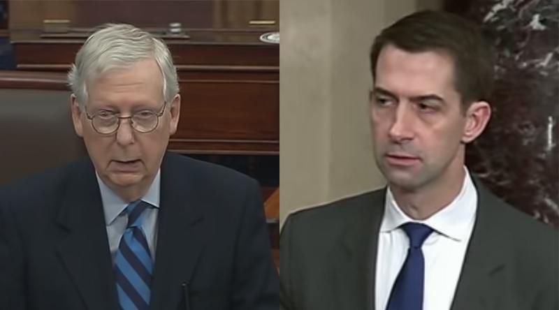 Mitch McConnell and Tom Cotton plotted behind Trump's back to derail him before the Capitol riot: new book