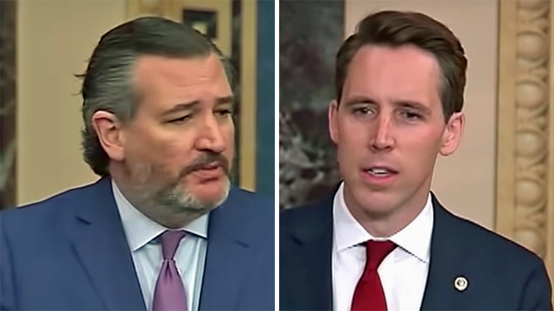 'Terrorists' Ted Cruz and Josh Hawley should be on no-fly list: House homeland security chair