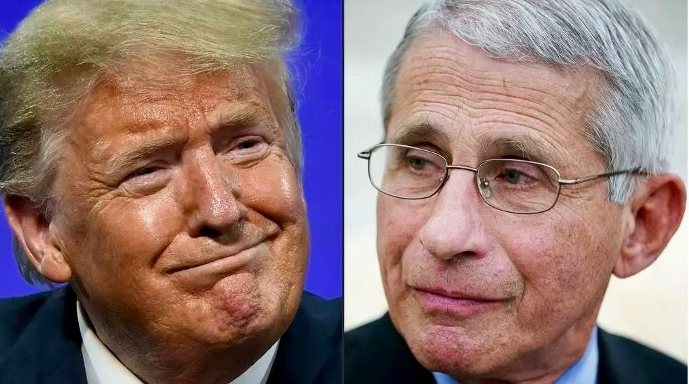 Trump reveals he did the 'opposite' of what Dr. Fauci recommended during pandemic